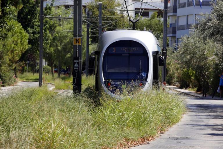 Η «ζούγκλα» του τραμ στη Γλυφάδα! Η οργή του Δημάρχου και οι απίστευτες εικόνες [pics]