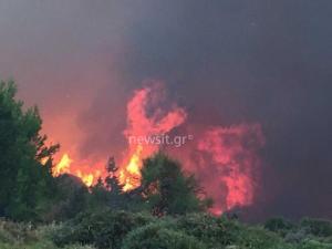 Πύρινη κόλαση η Ελλάδα! 91 πυρκαγιές μέσα σε 24 ώρες