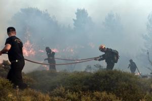 Φωτιά: Έκαψε τον Κάλαμο και τώρα τον Βαρνάβα! Εστίες και στο Καπανδρίτι