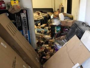 Οργή! 1.000 νεκρά ζώα σε αποθήκη, άλλα τόσα σε άθλια κατάσταση [vids, pics]