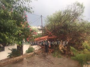 Καιρός: Βροχή και χαλάζι! Μεγάλες καταστροφές σε Φθιώτιδα και Χίο