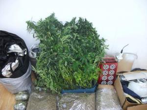 Ιωάννινα: Τον «τσάκωσαν» με 49 κιλά χασίς