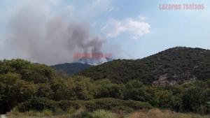 Μεγάλη φωτιά στο δάσος του Αχέροντα