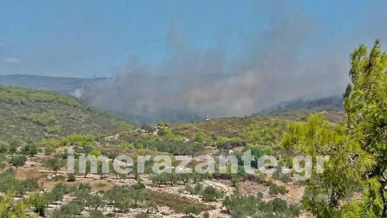 Μαίνονται οι φωτιές στην Ζάκυνθο – Τιτάνια μάχη των πυροσβεστών σε 12 μέτωπα | Newsit.gr