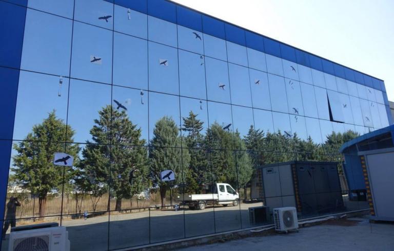 Κομοτηνή: Δεν έβαλαν τυχαία αυτά τα αυτοκόλλητα στην τζαμαρία – Τα πουλιά, οι αντανακλάσεις και το πρόβλημα [pics] | Newsit.gr