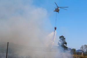 Αργολίδα: Τρεις φωτιές ξέσπασαν ταυτόχρονα! [pics]