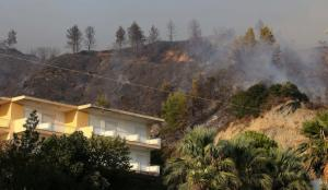 Φωτιά στη Χαλκιδική: Καταστροφές σε δύο σπίτια – Συγκρατημένα αιδιόδοξος ο Τζιτζικώστας [pics]