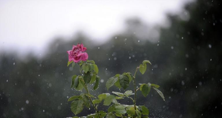 Καιρός: Βροχές και καταιγίδες – Που θα χτυπήσει η κακοκαιρία | Newsit.gr