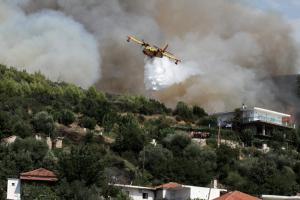 Πυροσβεστική: Περισσότερες φωτιές το 2017, αλλά λιγότερες καμένες εκτάσεις