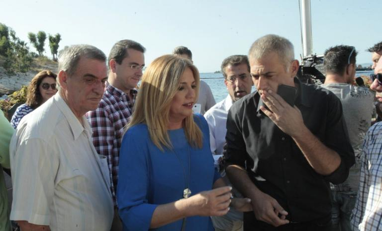 Γεννηματά: Τεράστιες οι ευθύνες της κυβέρνησης για την οικολογική καταστροφή   Newsit.gr