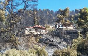 Υπό έλεγχο οι φωτιές στη Βόρεια Ελλάδα – Τρέχουν οι πυροσβέστες για τις αναζωπυρώσεις
