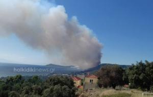 Στις αυλές των σπιτιών φτάνει η φωτιά της Χαλκιδικής! Νέα φωτιά στις Σέρρες! [vid]