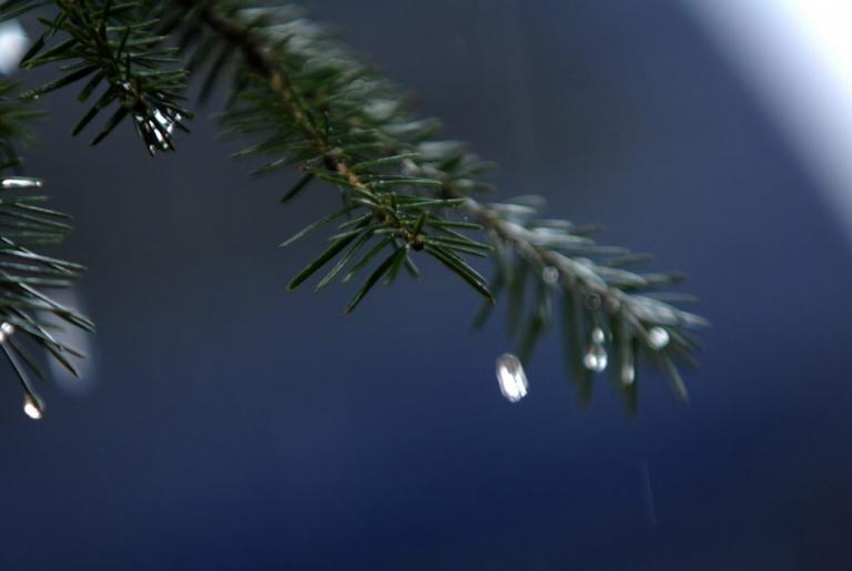 Καιρός: Χειμωνιάζει! Χαμηλά η θερμοκρασία την Πέμπτη! | Newsit.gr
