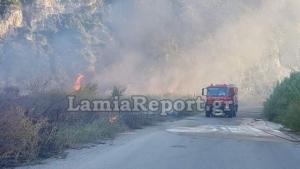 Βοιωτία: Οι φλόγες «έζωσαν» τους πυροσβέστες – Ένας τραυματίας