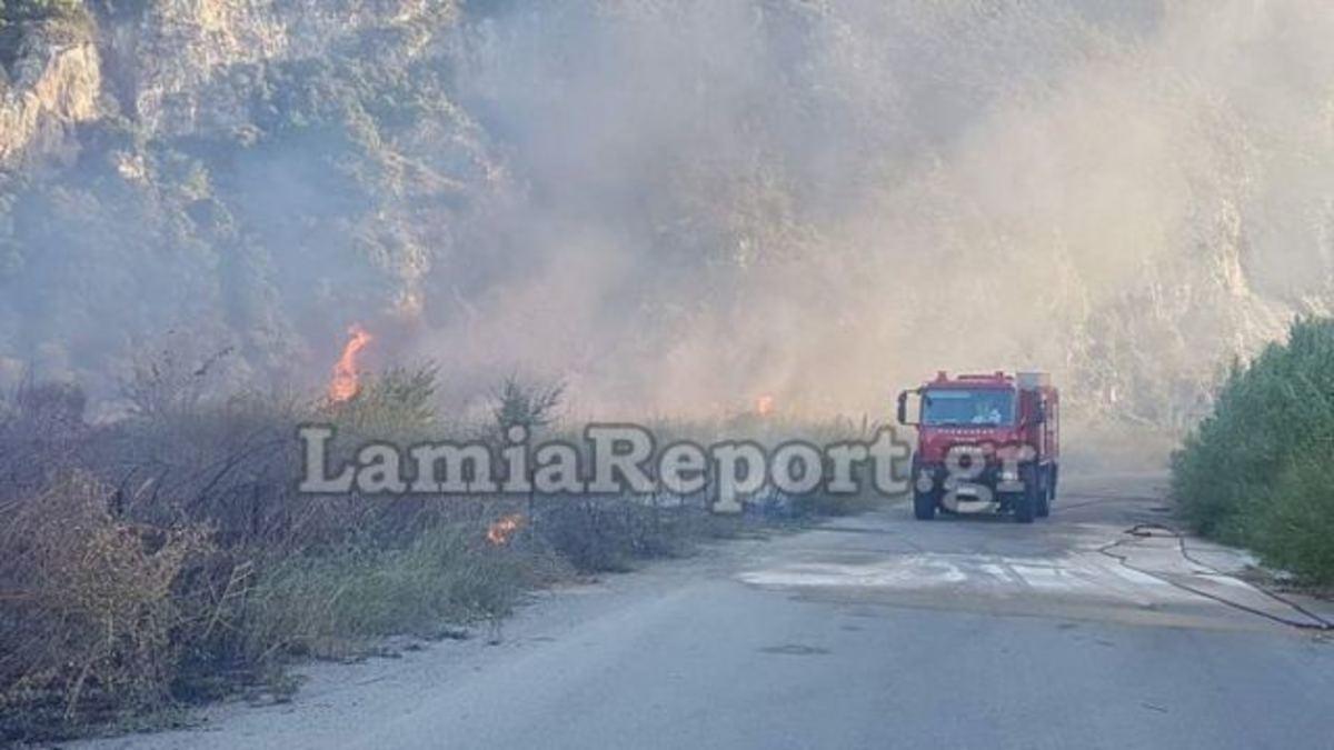 Βοιωτία: Οι φλόγες «έζωσαν» τους πυροσβέστες – Ένας τραυματίας | Newsit.gr