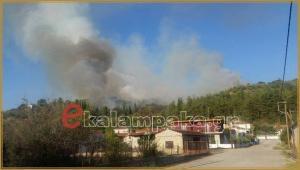Φωτιά στο δάσος της Βασιλικής Καλαμπάκας! Είναι κοντά σε οικισμό [pics]