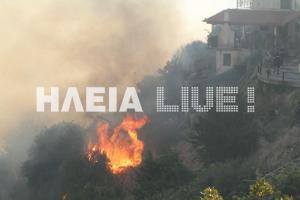 Ηλεία: Ολονύχτια μάχη με τις φλόγες για να μην ξανακαεί η Μάκιστος – Μνήμες 2007 «ξύπνησαν» στους κατοίκους [pics]