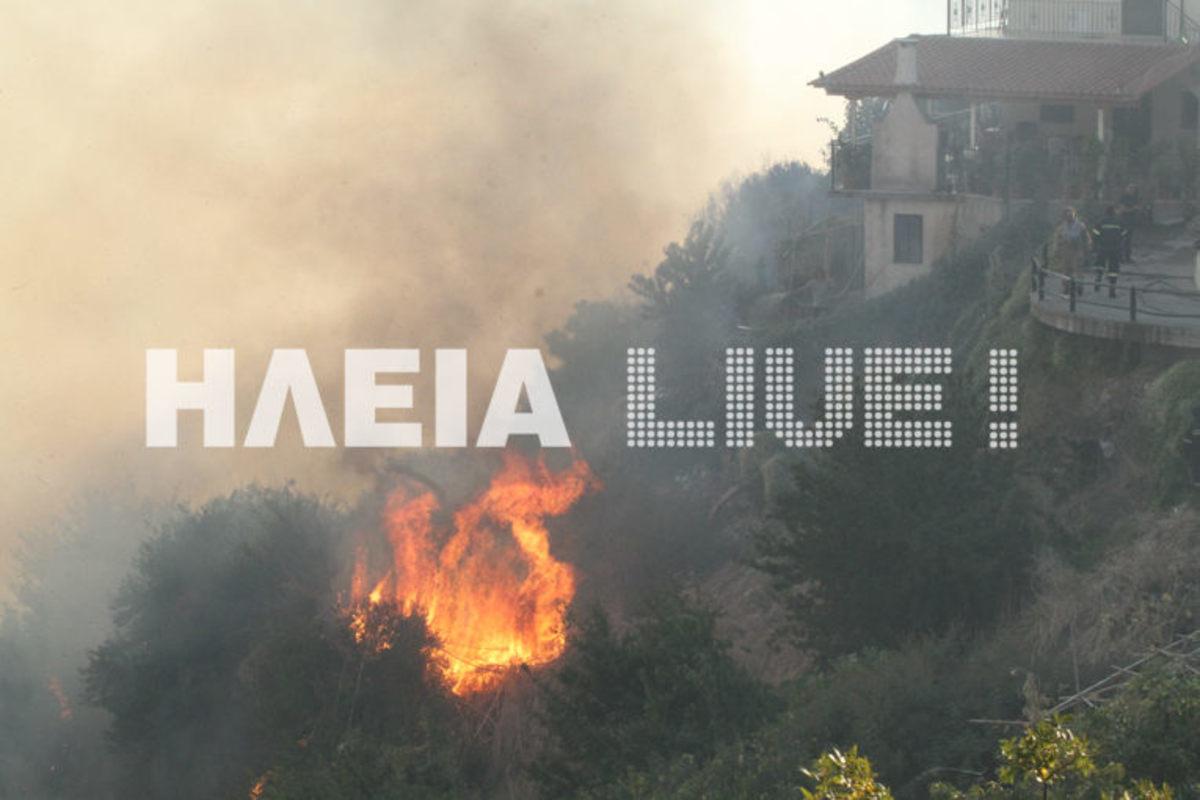 Ηλεία: Ολονύχτια μάχη με τις φλόγες για να μην ξανακαεί η Μάκιστος – Μνήμες 2007 «ξύπνησαν» στους κατοίκους [pics] | Newsit.gr