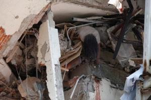 Σεισμός στο Μεξικό: Δεκάδες οι νεκροί! Πολιτείες έγιναν συντρίμμια