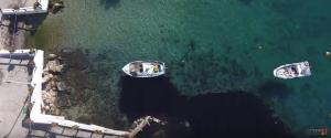 Πετρελαιοκηλίδα στον Σαρωνικό: Θλιβερές εικόνες από drone