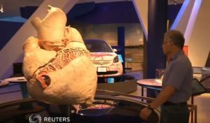 Η μεγαλύτερη καρδιά του κόσμου ζυγίζει 181 κιλά