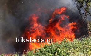 Μεγάλη φωτιά στο Κεφαλόβρυσο Τρικάλων [vid]