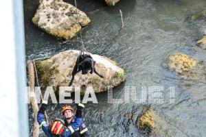 Πύργος: Ο σκύλος και οι πυροσβέστες διασώστες του [pics, vid]