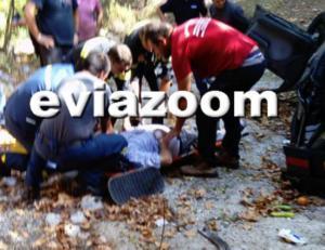 Εύβοια: Σκοτώθηκε σε φοβερό τροχαίο ο Σταύρος Βιολέτης – Το αυτοκίνητό του έπεσε από γέφυρα [pics]