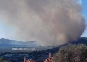 Μάχη με τις φλόγες στη Χαλκιδική – Σε ύφεση η φωτιά στις Σέρρες