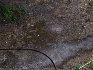Λέσβος: Μπουρίνι με… χαλάζι – Ζημιές σε καλλιέργειες [vid]