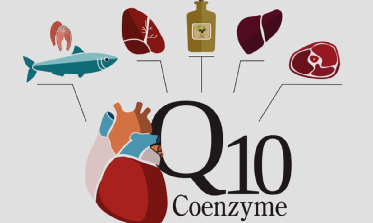 Συνένζυμο Q10: Σε ποιες τροφές υπάρχει, τι προσφέρει, δοσολογία και παρενέργειες   Newsit.gr