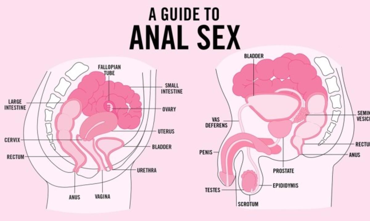 Κάνει καμιά γυναίκα σαν το πρωκτικό σεξ