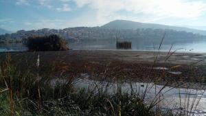 Καστοριά: Αλλαγή σκηνικού στη διάσημη λίμνη – Η απώλεια νερού την κάνει… πιο φιλόξενη [pics]