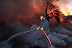 Αχαϊα: Σώθηκε το δάσος της Στροφυλιάς – Η περίεργη φωτιά και οι έρευνες για εμπρησμό!