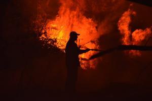 Αχαϊα: Φωτιά σε προστατευόμενη δασική έκταση στην περιοχή Καλόγρια – Επί τόπου ισχυρές πυροσβεστικές δυνάμεις!