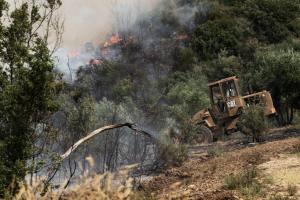 Ηράκλειο: Φωτιά στη Ροδιά – Μάχη με φλόγες και ανέμους