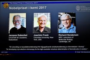 Νόμπελ Χημείας 2017: Σε τρείς για την απεικόνιση των βιομορίων