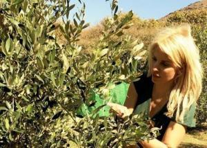 Η Ελένη Μενεγάκη μαζεύει ελιές στην Άνδρο! Φωτογραφίες