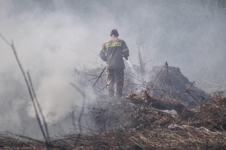 Κρήτη: Στο «πόδι» η Πυροσβεστική για φωτιά σε χωριό του Ηρακλείου | Newsit.gr
