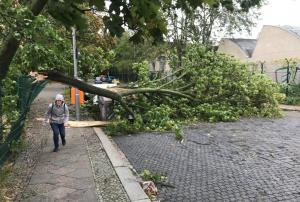 «Σαρώνει» την Γερμανία η φονική κακοκαιρία – 7 νεκροί και «πανικός» στις συγκοινωνίες [pics]