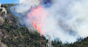 Φλέγεται η Ιταλία – Μαίνονται οι πυρκαγιές – Και ο στρατός στην επιχείρηση κατάσβεσης