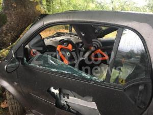 Καλαμπάκα: Νεκρός 27χρονος σε τροχαίο – Έχασε τον έλεγχο και καρφώθηκε σε δέντρο [pics]