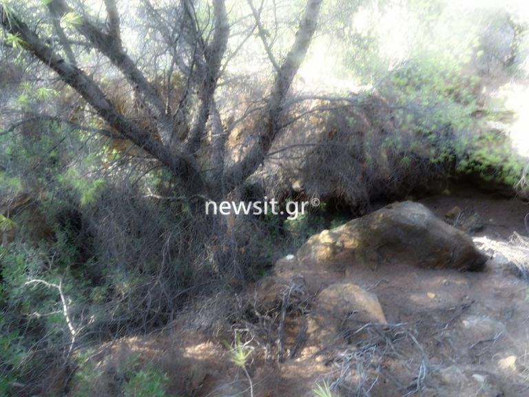 «Τρέχουν» οι εξελίξεις για τα ανθρώπινα οστά στο Σούνιο! | Newsit.gr