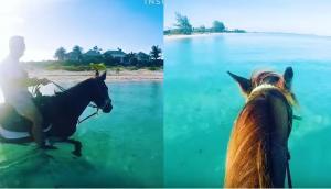 Ιππασία στο απέραντο γαλάζιο της Καραϊβικής Θάλασσας