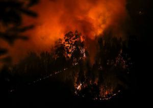 Πορτογαλία: Στους 41 οι νεκροί από τις φονικές πυρκαγιές
