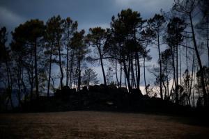 Παραιτήθηκε η υπουργός Εσωτερικών της Πορτογαλίας για τις καταστροφικές πυρκαγιές