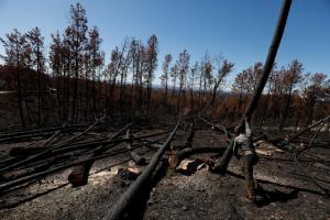 Παραδομένη στις φλόγες η Πορτογαλία – Ένας νεκρός