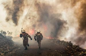Πορτογαλία: Στους 27 οι νεκροί από τις φονικές πυρκαγιές – Πάνω από 145 οι εστίες
