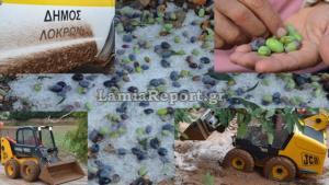 Φθιώτιδα: Ο «Δαίδαλος» αγρίεψε! Εικόνες απόλυτης καταστροφής από τη χαλαζόπτωση [pics, vids]