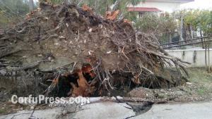 Κέρκυρα: Περιοχές θυμίζουν βομβαρδισμένα τοπία – Κατολισθήσεις, πλημμύρες και ζημιές από την κακοκαιρία [pics]